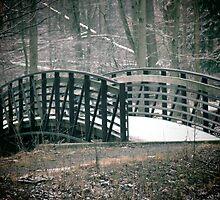 Winter Bridge by Veronica Schultz