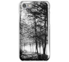 Sunlight through Grainy Trees iPhone Case/Skin