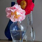 Camellias and Glass by Jay Gross