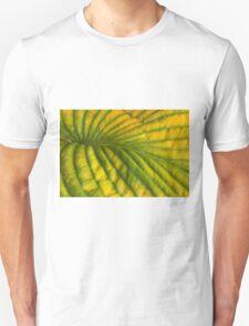 Deep Folds Down the Valley T-Shirt