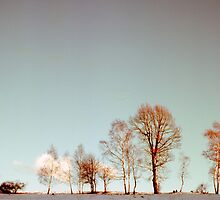 Winter horizont by PetraEs
