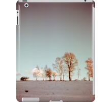 Winter horizont iPad Case/Skin