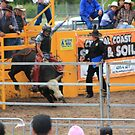 Bull Rider by SylanPhotos