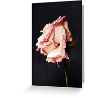With Petals like Paper Greeting Card