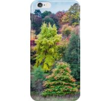 Nature's Colours in Autumn iPhone Case/Skin
