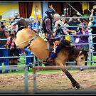 Mini Bronc Rider by SylanPhotos