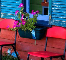 Between the red chairs - petunias on colour by clickedbynic