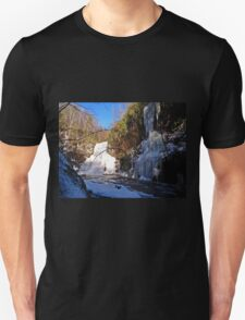 Flowing And Frozen  T-Shirt