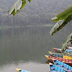 Boats at Pokarah, Nepal by Joanne Rinaldi