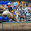 Mini Bronc Rider 3 by SylanPhotos