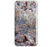 At The Geysers iPhone Case/Skin