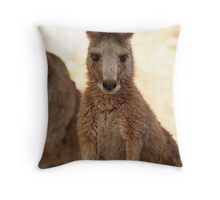 Kangaroos up Close Throw Pillow