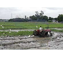 preparing land with tractor for cultivation Photographic Print