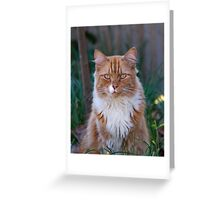 I Come to Visit Greeting Card
