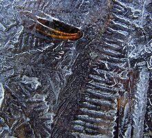 Ice pattern by sarahtakespics