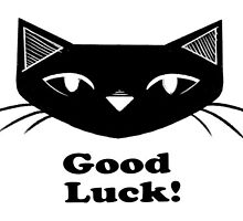 Good Luck! by Meredith Binnette