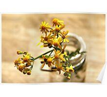 Yellow Wild Flowers Poster