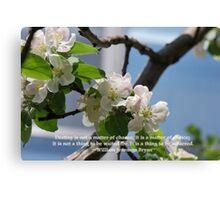 Spring Blossom 2012 8 Canvas Print