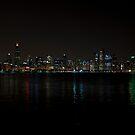 Chicago Skyline by eegibson
