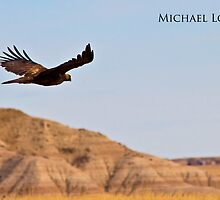 Badlands Eagle by wanblake