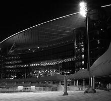 Meydan Racecourse - Dubai by Mark Bolton