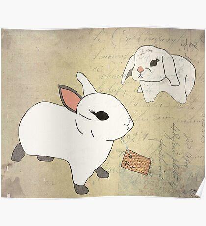 White Rabbits Poster