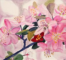 Painting of Crabapple Blossoms by Teddie McConnell