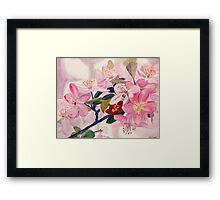Painting of Crabapple Blossoms Framed Print