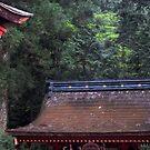 wooden roof by yvesrossetti