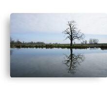 River Mirror Image Canvas Print