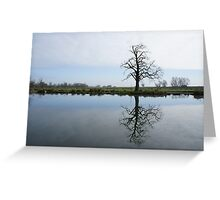 River Mirror Image Greeting Card