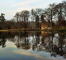 High Pond by Lynne Morris