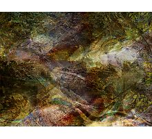 Elements of Earth Photographic Print