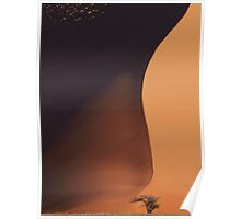 Namibia: The Dune Poster
