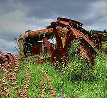 COLOUR ME RUST.........! by Roy  Massicks
