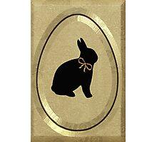 BUNNY IN EGG WITH A TOUCH OF GOLD Photographic Print