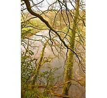 Meandering .. Photographic Print