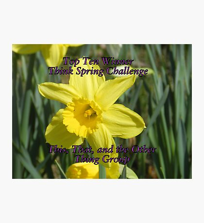 Top Ten - Think Spring Photographic Print
