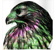 Hawk, v5 Poster