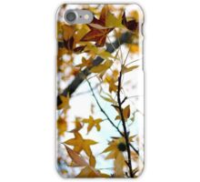 An Autumn's Afternoon iPhone Case/Skin