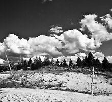 Desolation #2 by gematrium