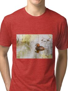 Little grebe (Tachybaptus ruficollis) swimming in a pond.  Tri-blend T-Shirt
