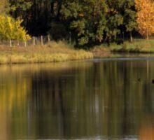 Autumn Reflection Sticker