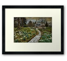 Daffodil Lane Framed Print