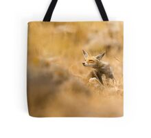 Red Fox (Vulpes vulpes). The Red Fox is the largest of the true foxes, Tote Bag