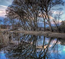 Crooked Line Up by Bob Larson