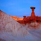 Toadstool Twilight by DawsonImages