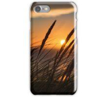 Sunset through tall grass iPhone Case/Skin