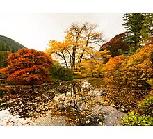 Autumn Reflections Photographic Print