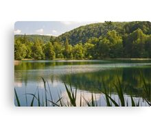 Lake in the forest. Canvas Print
